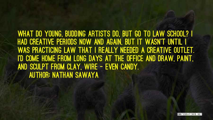 School Days Quotes By Nathan Sawaya