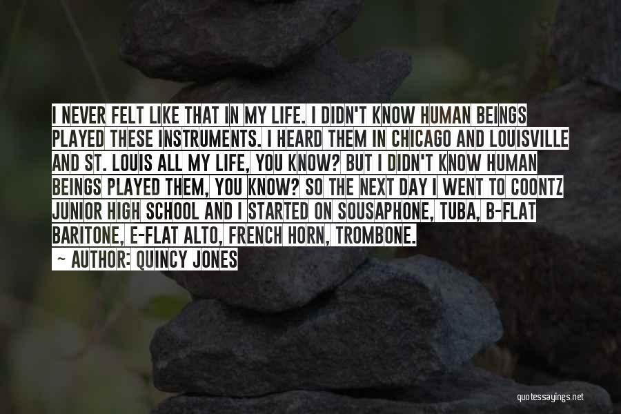 School Life Quotes By Quincy Jones