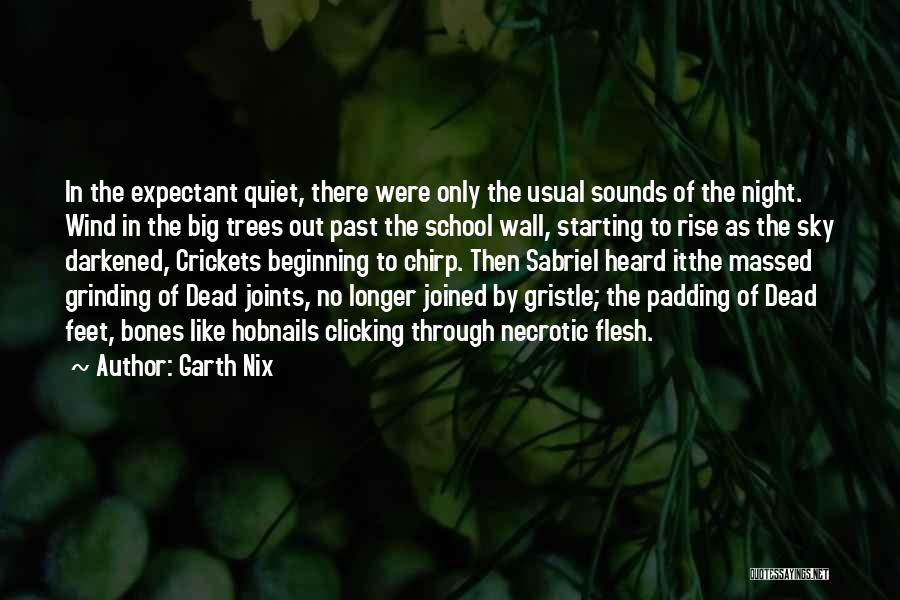 School Quotes By Garth Nix