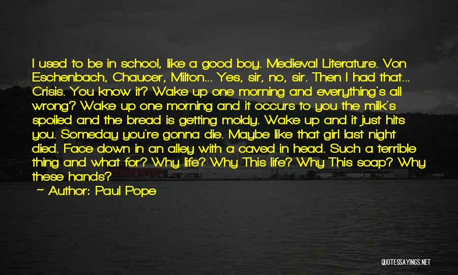 School Ready Quotes By Paul Pope