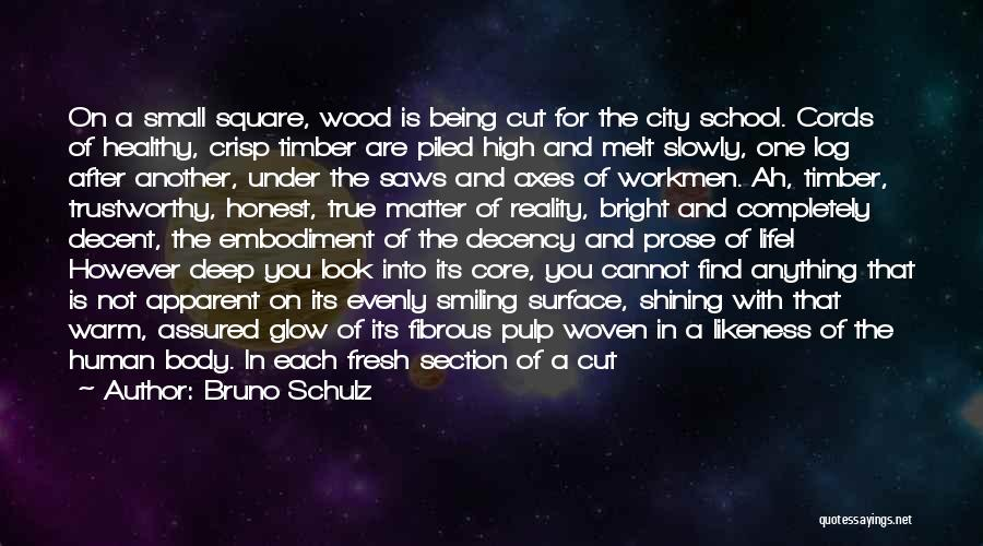 School Section Quotes By Bruno Schulz