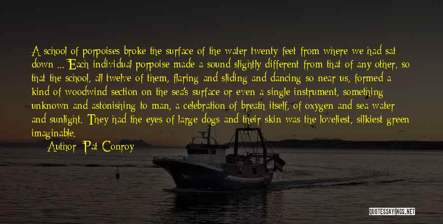 School Section Quotes By Pat Conroy