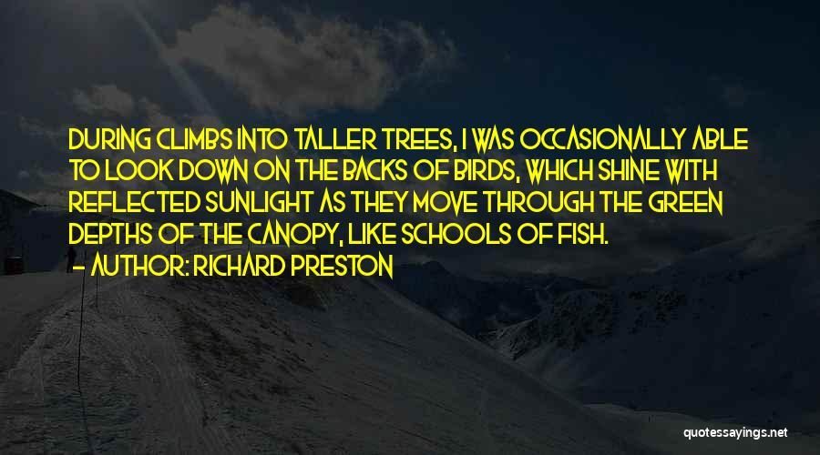 Schools Of Fish Quotes By Richard Preston