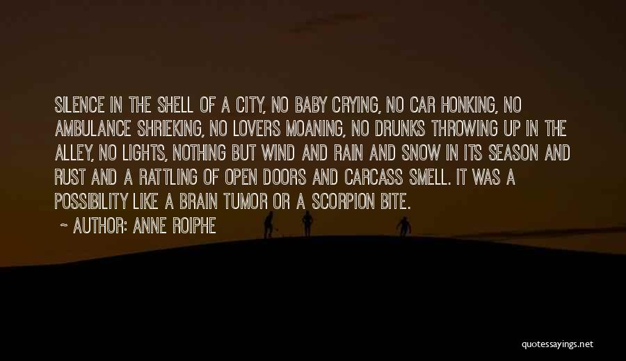 Scorpion Quotes By Anne Roiphe