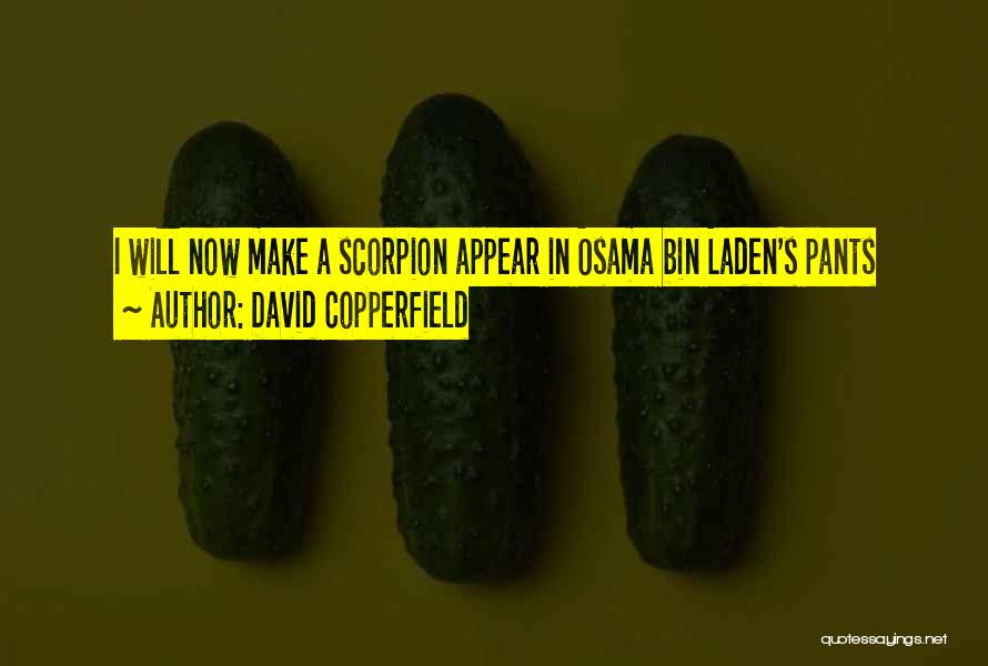 Scorpion Quotes By David Copperfield
