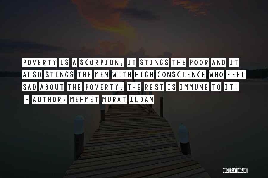 Scorpion Quotes By Mehmet Murat Ildan