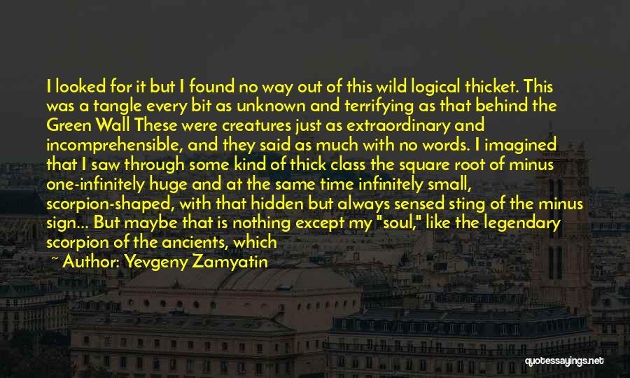 Scorpion Quotes By Yevgeny Zamyatin