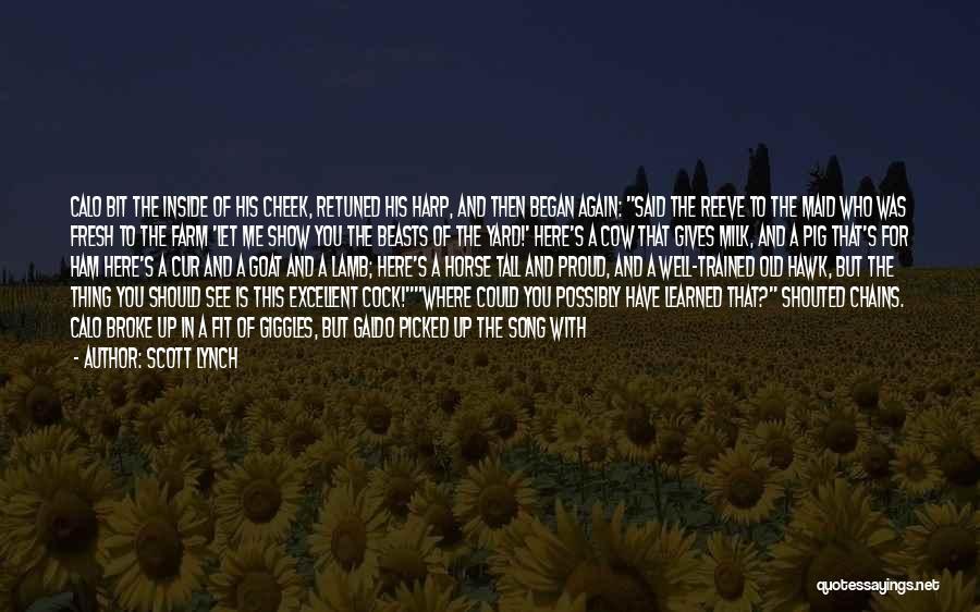 Scott Lynch Quotes 1181395