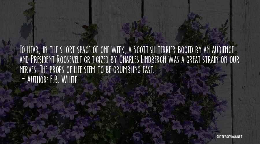 Scottish Terrier Quotes By E.B. White