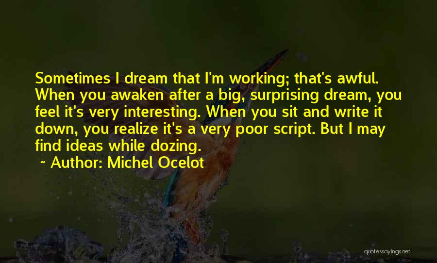 Script Writing Quotes By Michel Ocelot