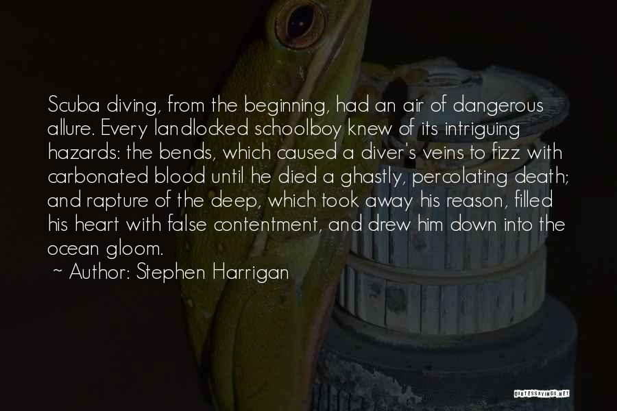 Scuba Diving Quotes By Stephen Harrigan