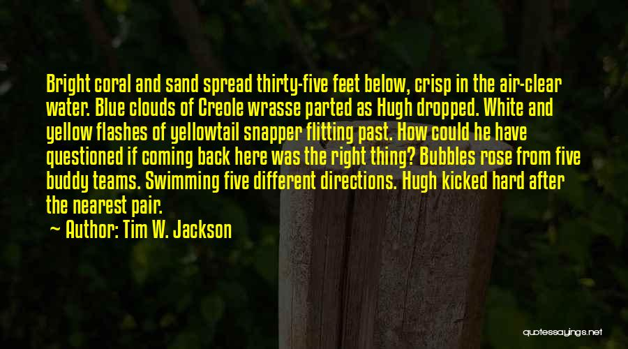 Scuba Diving Quotes By Tim W. Jackson