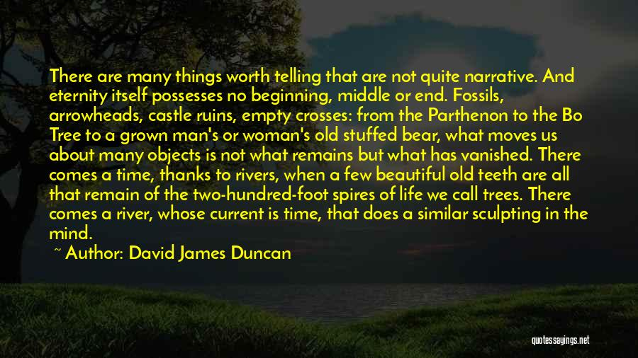 Sculpting Quotes By David James Duncan