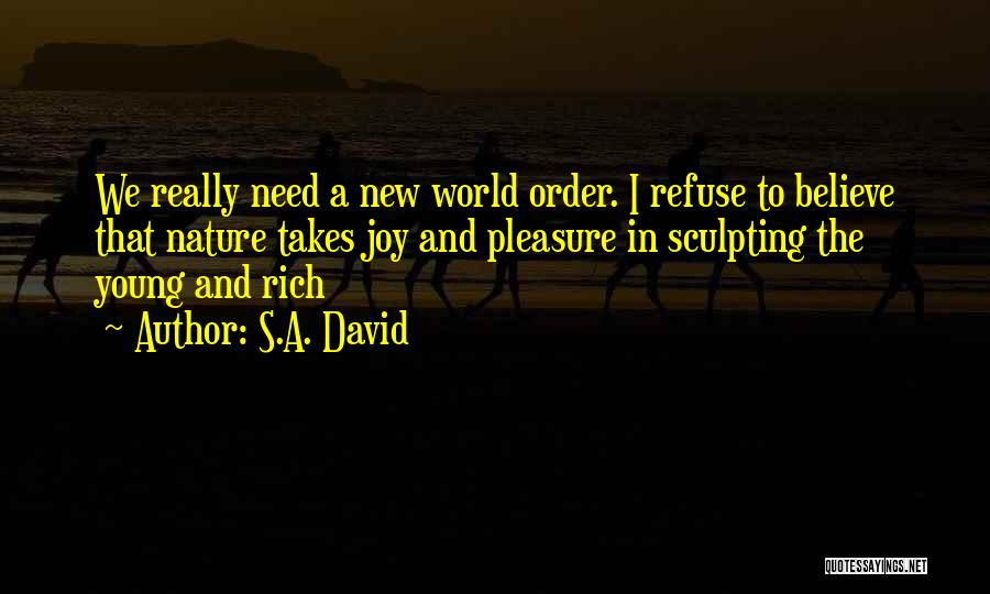 Sculpting Quotes By S.A. David