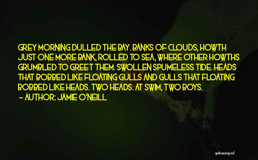 Sea And Clouds Quotes By Jamie O'Neill