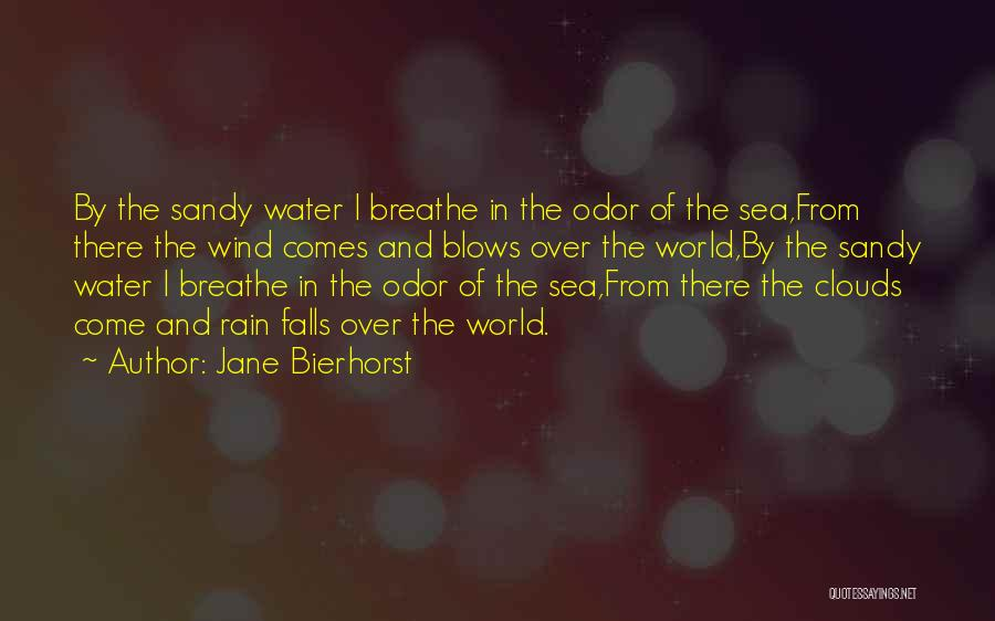 Sea And Clouds Quotes By Jane Bierhorst