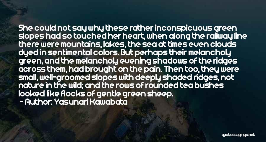 Sea And Clouds Quotes By Yasunari Kawabata