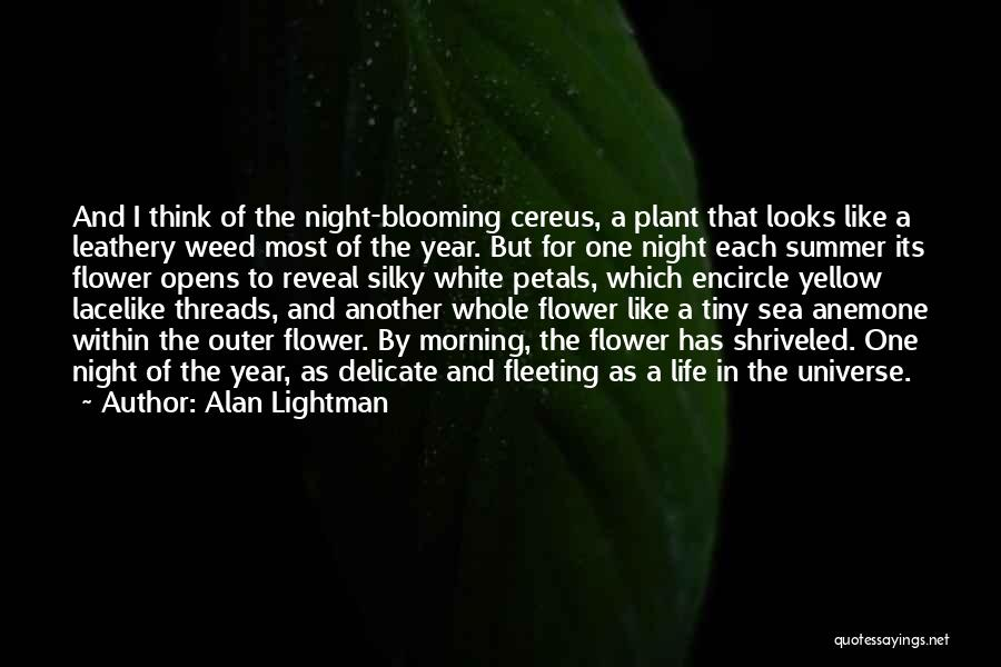 Sea Anemone Quotes By Alan Lightman