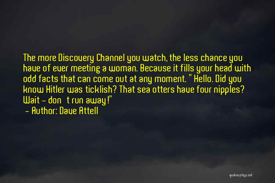 Sea Otters Quotes By Dave Attell