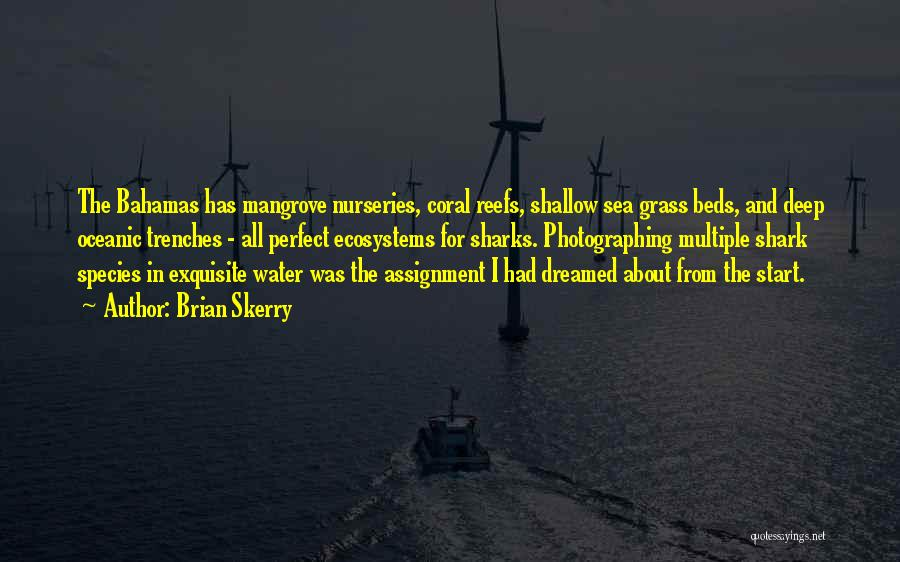 Sea Species Quotes By Brian Skerry
