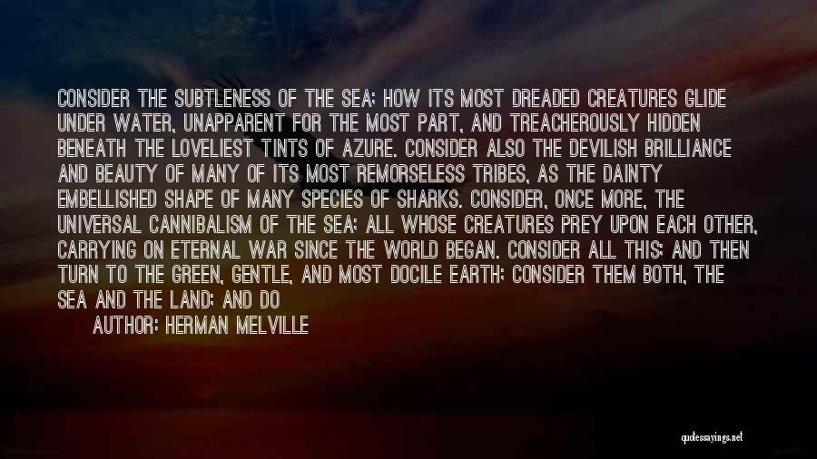 Sea Species Quotes By Herman Melville