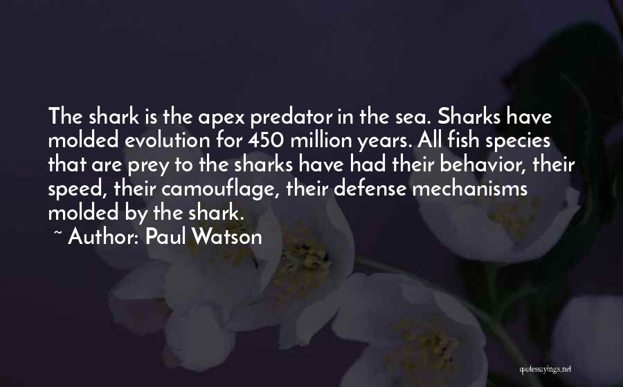 Sea Species Quotes By Paul Watson