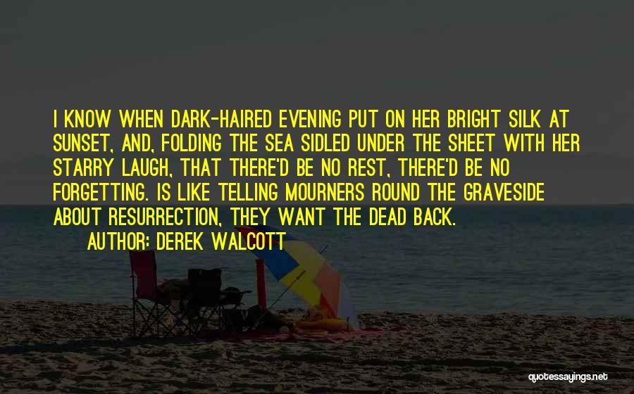Sea Sunset Quotes By Derek Walcott