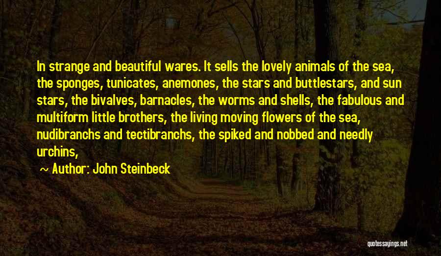Sea Urchins Quotes By John Steinbeck