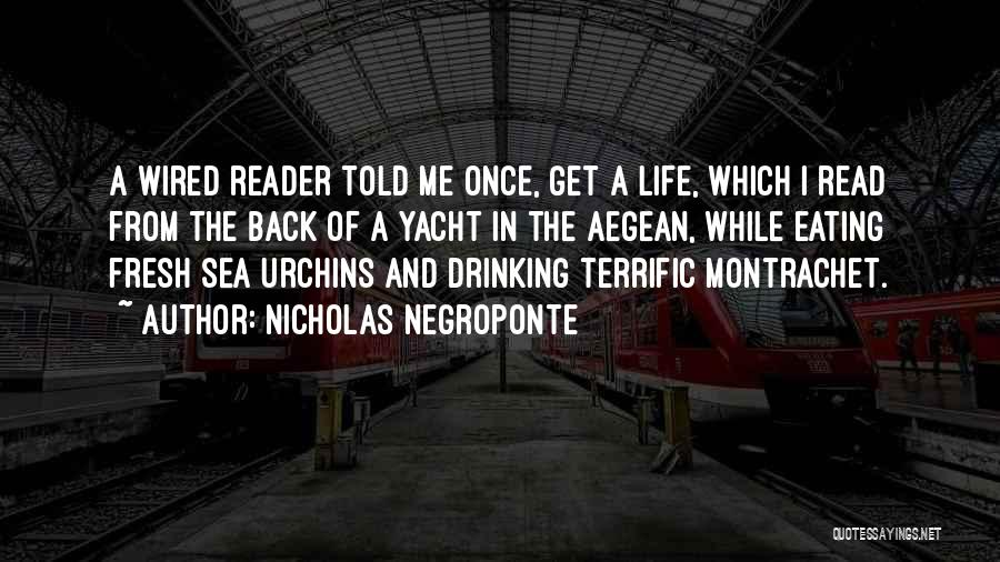 Sea Urchins Quotes By Nicholas Negroponte