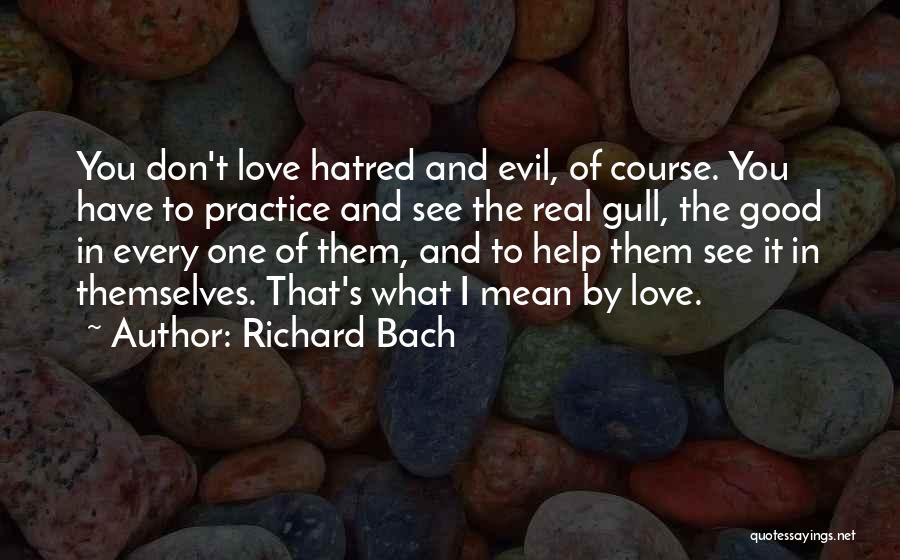 Seagull Jonathan Quotes By Richard Bach