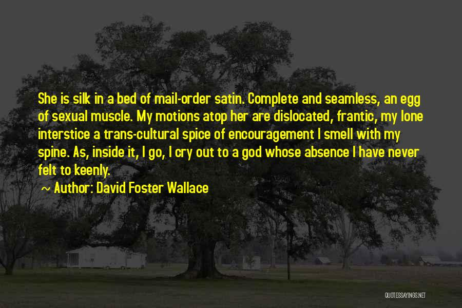 Seamless Quotes By David Foster Wallace
