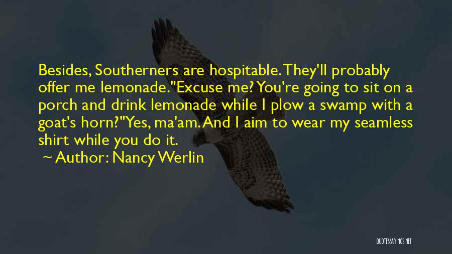 Seamless Quotes By Nancy Werlin