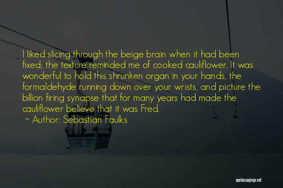 Sebastian Faulks Quotes 1224073