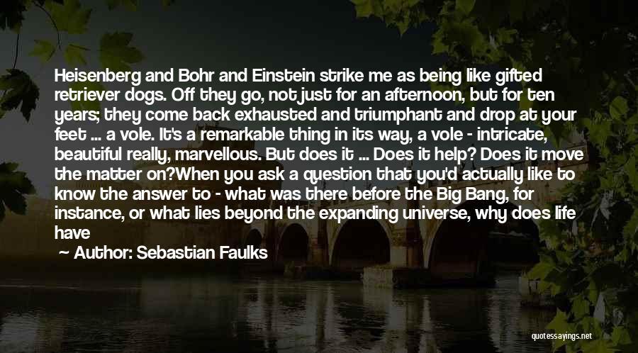 Sebastian Faulks Quotes 1992242