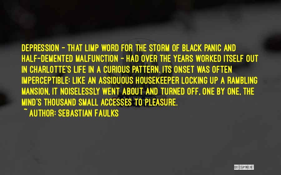 Sebastian Faulks Quotes 961213