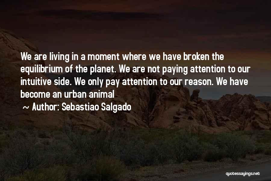 Sebastiao Salgado Quotes 846326