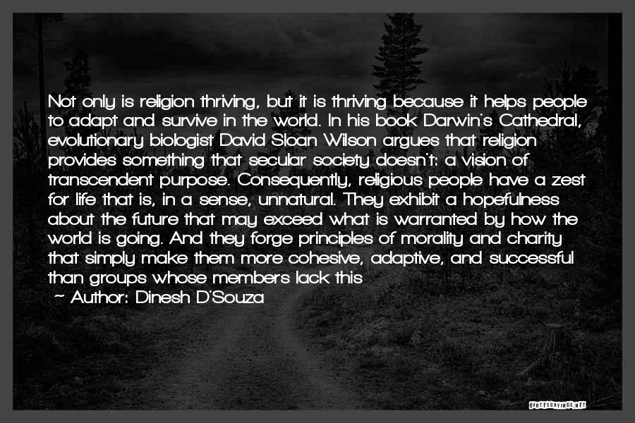 Secular Society Quotes By Dinesh D'Souza