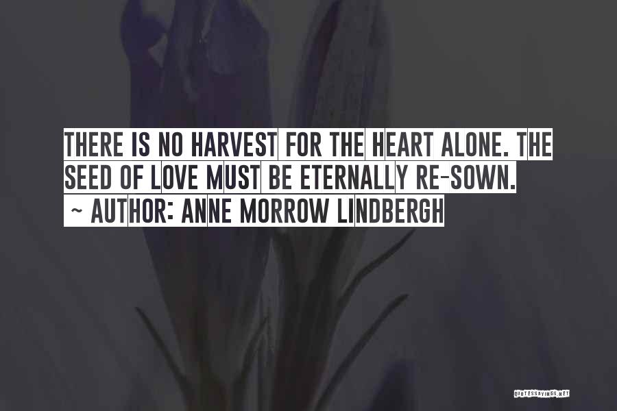 Seed Sown Quotes By Anne Morrow Lindbergh