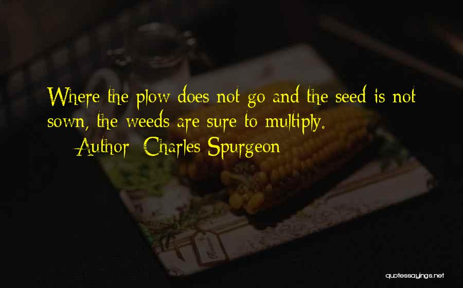 Seed Sown Quotes By Charles Spurgeon