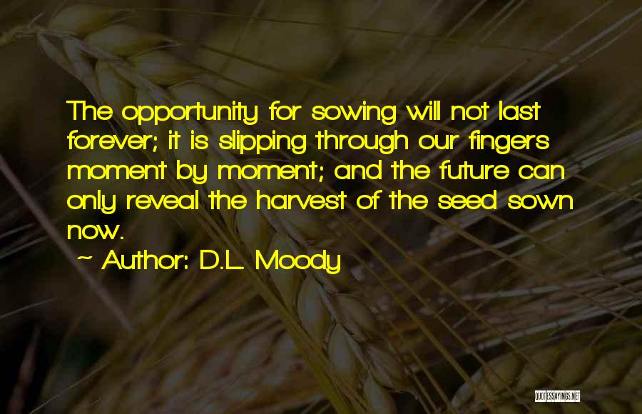 Seed Sown Quotes By D.L. Moody