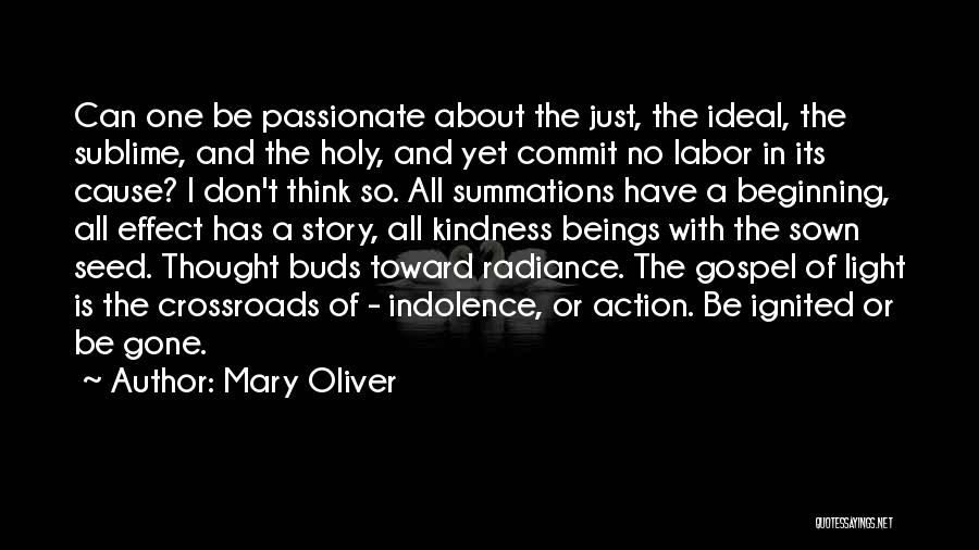 Seed Sown Quotes By Mary Oliver