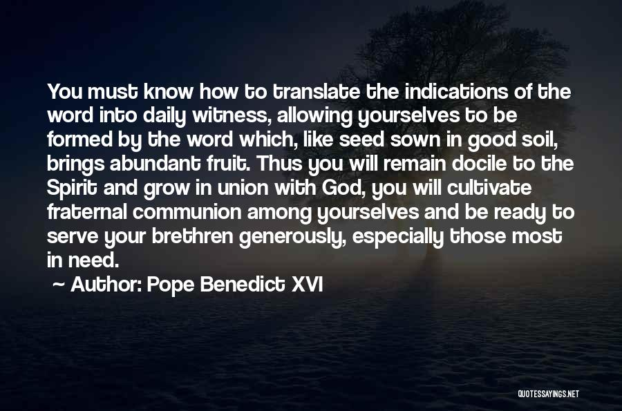 Seed Sown Quotes By Pope Benedict XVI