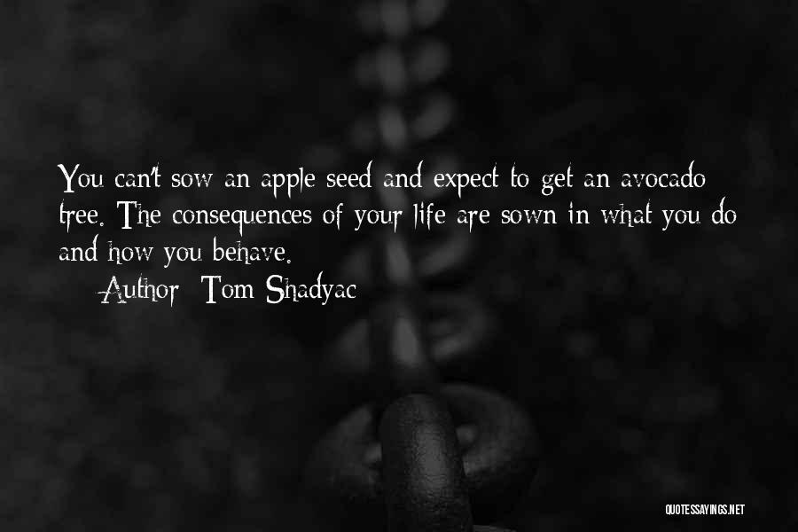 Seed Sown Quotes By Tom Shadyac