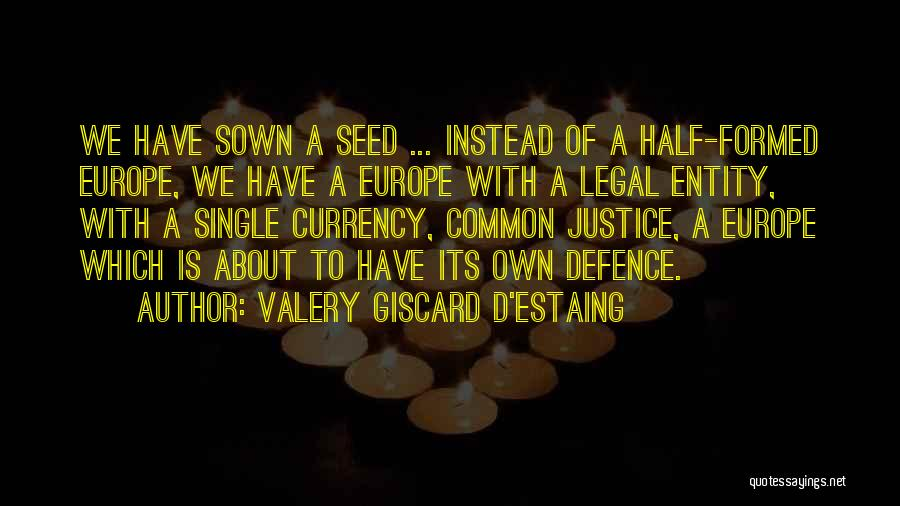 Seed Sown Quotes By Valery Giscard D'Estaing