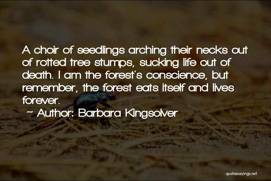 Seedlings Quotes By Barbara Kingsolver