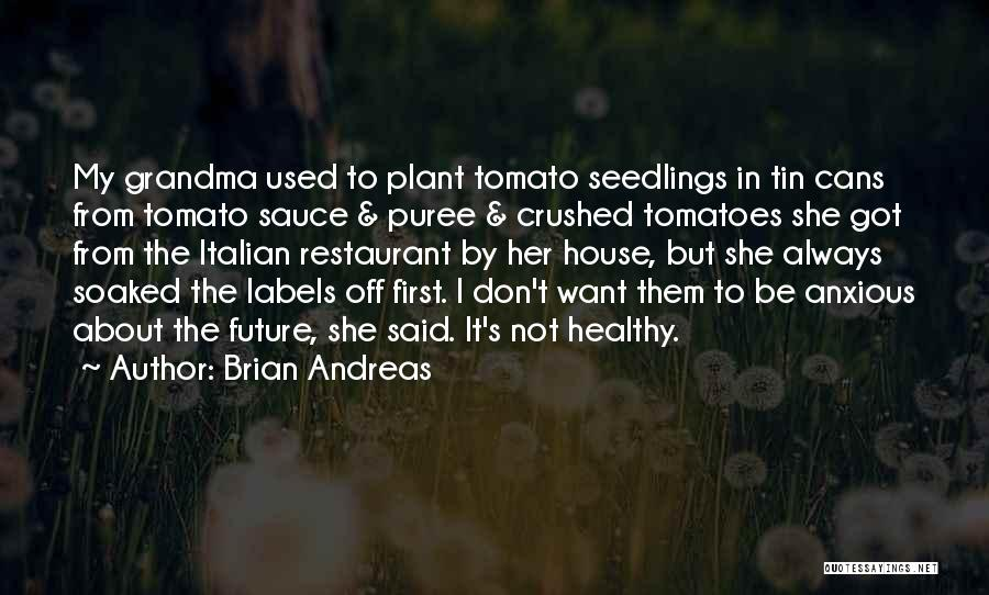 Seedlings Quotes By Brian Andreas