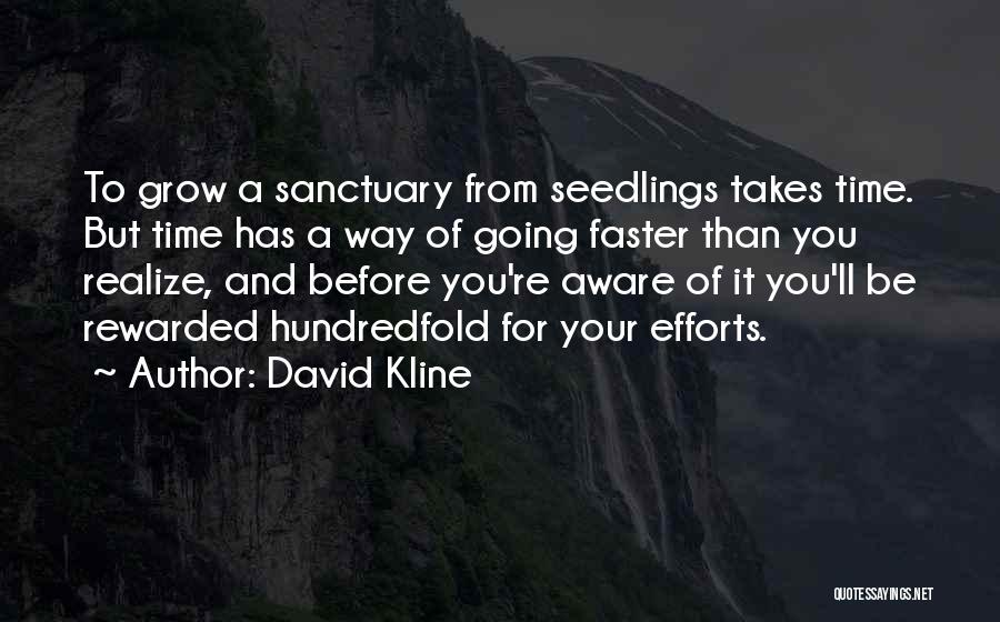 Seedlings Quotes By David Kline