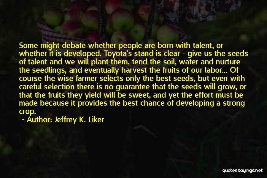 Seedlings Quotes By Jeffrey K. Liker