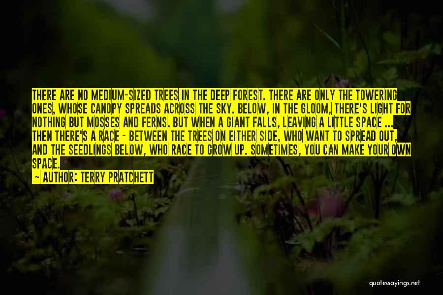 Seedlings Quotes By Terry Pratchett