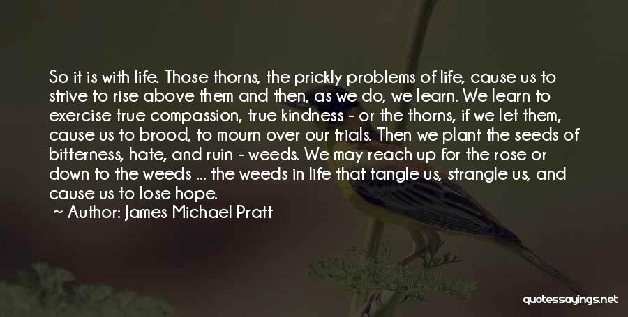 Seeds Of Hope Quotes By James Michael Pratt